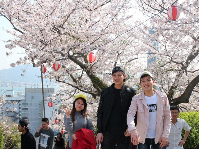 2018 Cherry-blossom Viewing – Shimonoseki School