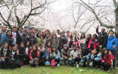 2019 Cherry-blossom Viewing – Hagi School